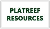 Platreef resources logo